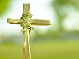 Palm Cross with Green Background